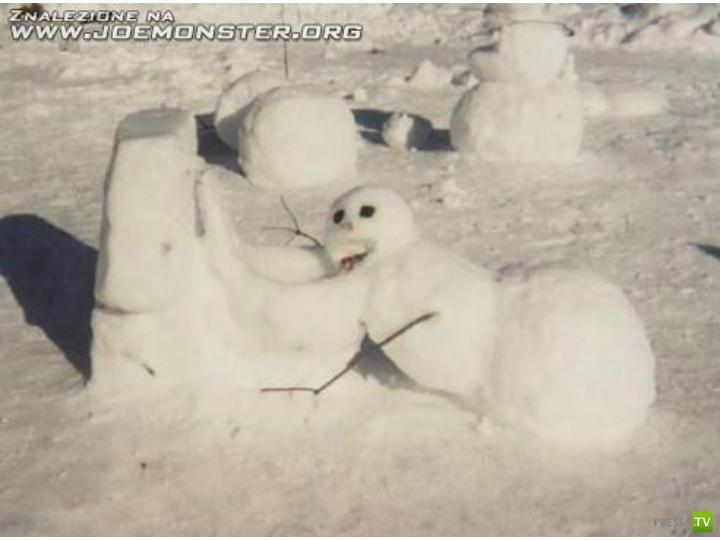 Когда вы последний раз лепили Снеговика? (40 фото)