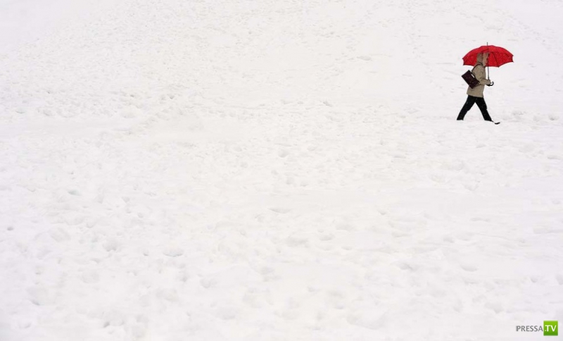 Скованная морозами (17 фото)