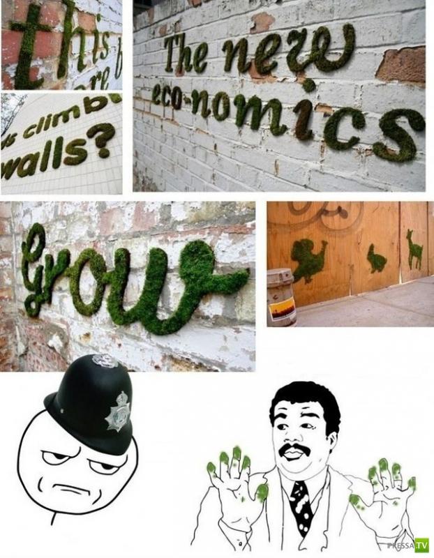 Интересная задумка живого граффити (9 фото)