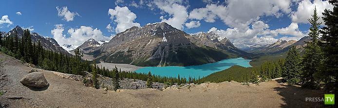 Озеро Пейто в Скалистых горах в Северной Америке... (8 фото)
