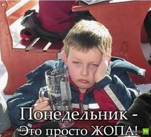 Понедельник - день тяжелый (48 фото)