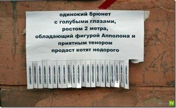 Подборка народных маразмов, надписей и реклам (37 фото)