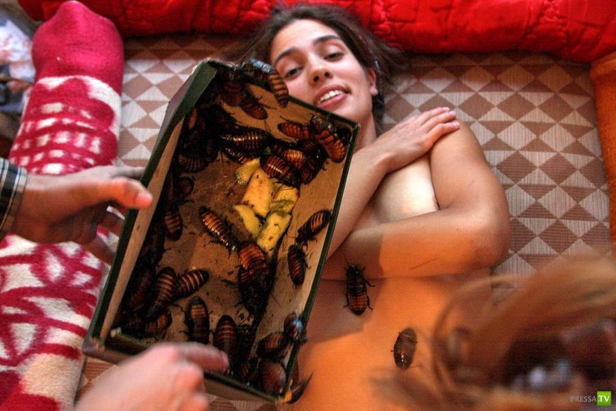 porno-foto-kuritsi