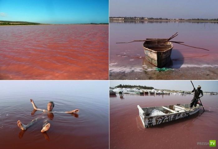 Озеро Лак-Росе в Сенегале (6 фото)
