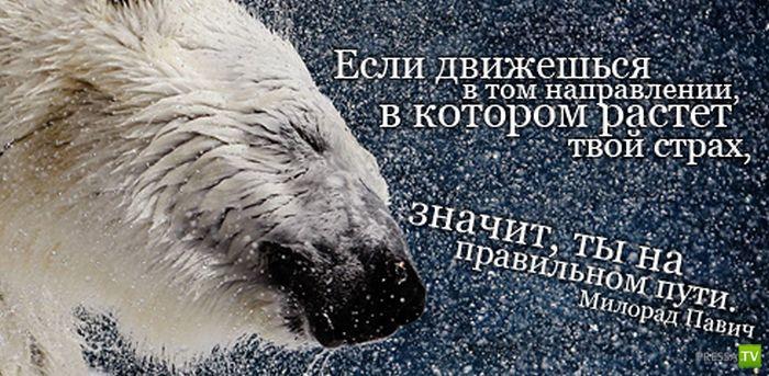 http://www.pressa.tv/uploads/posts/2012-06/1340597966_23.jpg