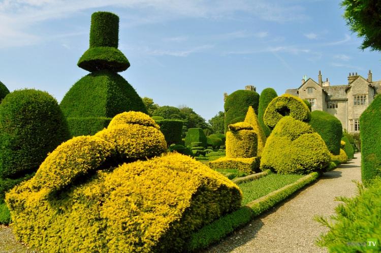 Самый красивый сад Великобритании - Левенс Холл (25 фото)