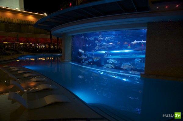 В отеле Golden Nugget в Las Vegas водные горки и бассейн с акулами (16 фото)