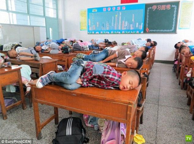 Китайская традиция - поспать после обеда (5 фото)