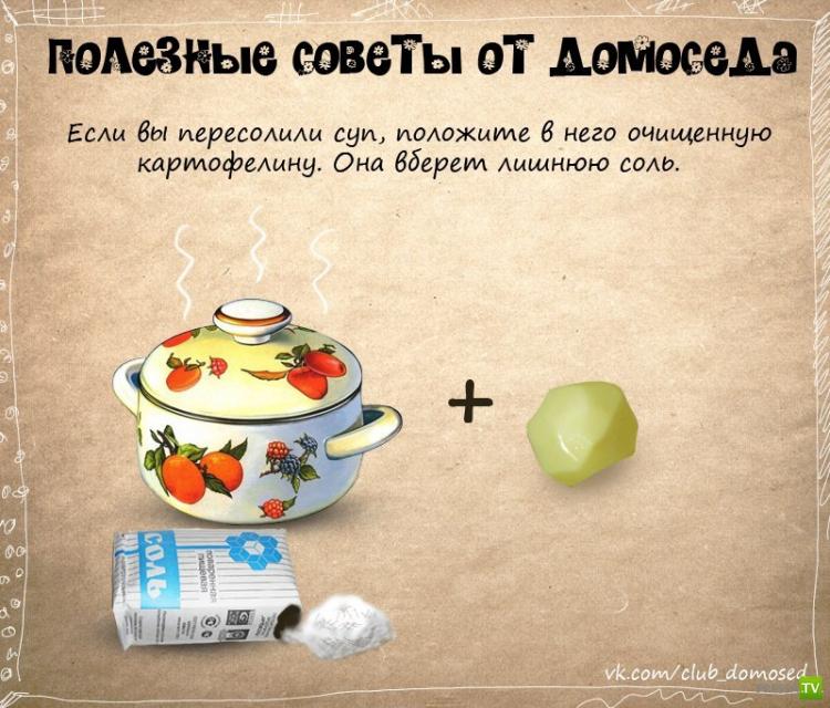Очень дельные и полезные советы от Домоседа (11 фото)