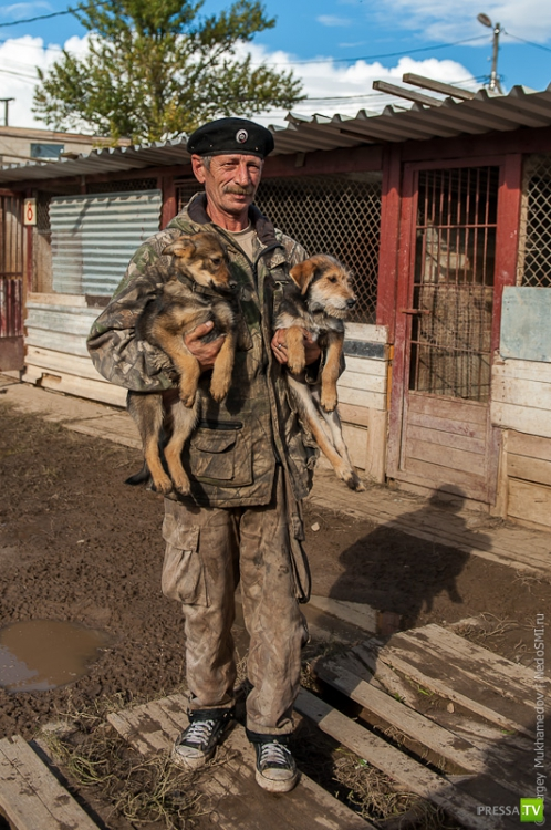 Продал квартиру и организовал собачий приют (23 фото)