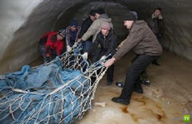 11-летний ненецкий мальчик - Евгений Салиндер нашел тушу мамонта...