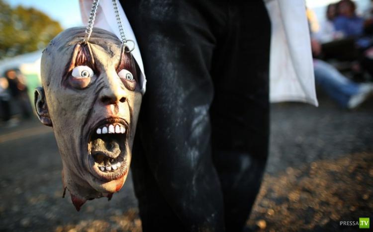Фестиваль Шоктябрь-2012 в Западном Сассексе (15 фото)