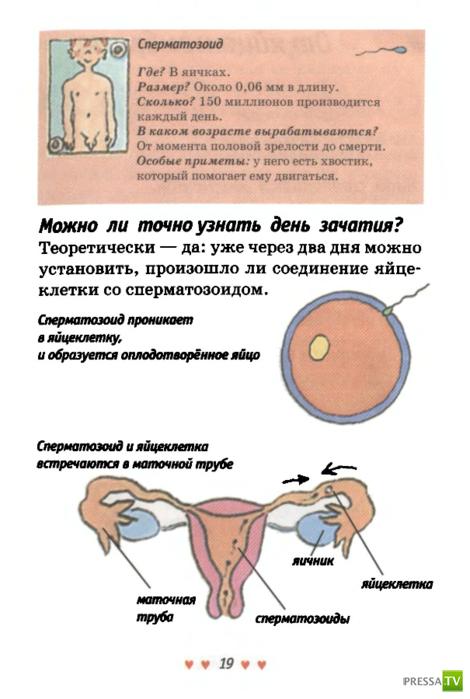 ooo-transliga-moskva