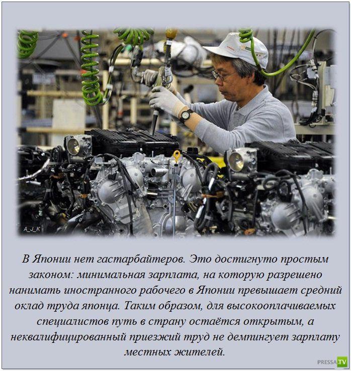 Интересные факты обо всем на свете в фотографиях, часть 2 (20 фото)