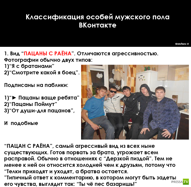 Классификация особей мужского пола ВКонтакте (2 фото)
