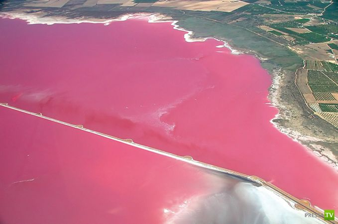 Необыкновенные розовые озера (13 фото)