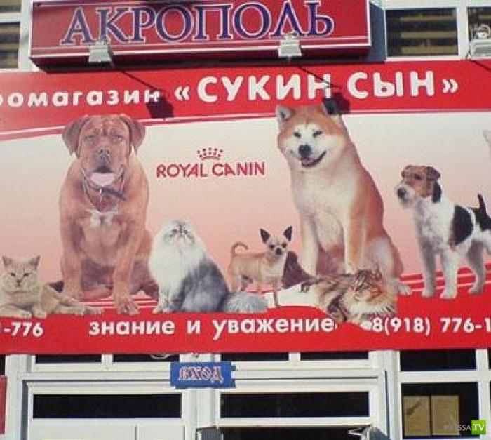 Народные маразмы - реклама и объявления, часть 17 (44 фото)
