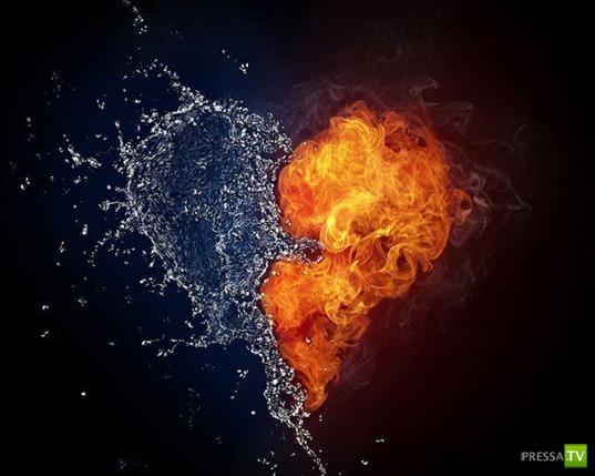 Любовь живет три года...