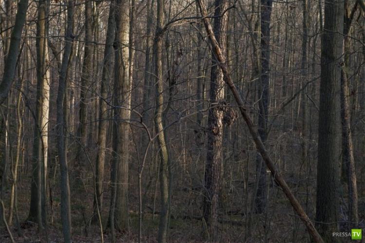 13 «жутких» мест, где снимались фильмы ужасов (13 фото)