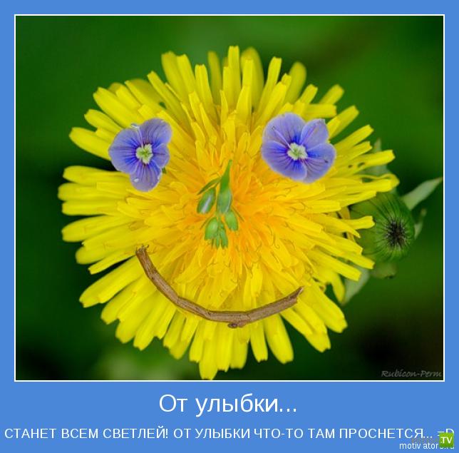 Позитивные мотиваторы, часть 9 (16 фото)