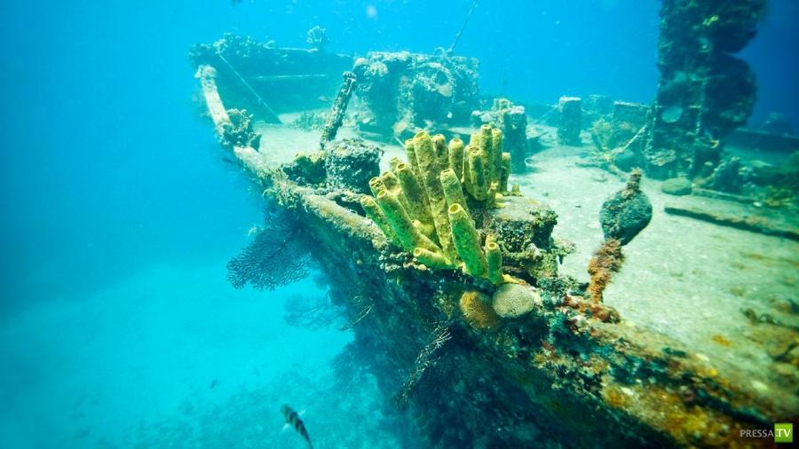 Сент-Люсия — островная страна в Карибском море. Остров мечты (12 фото)