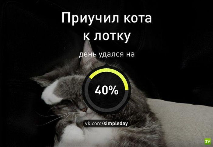 Насколько день удался? (20 фото)
