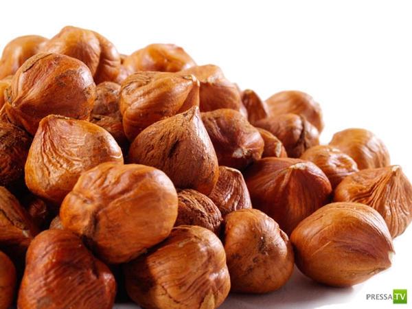Интересные факты об орехах (7 фото)