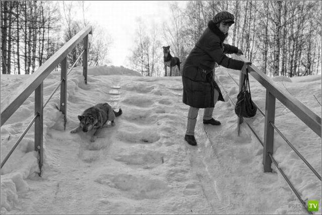Прикольные фотографии, февраль 20 (100 фото)