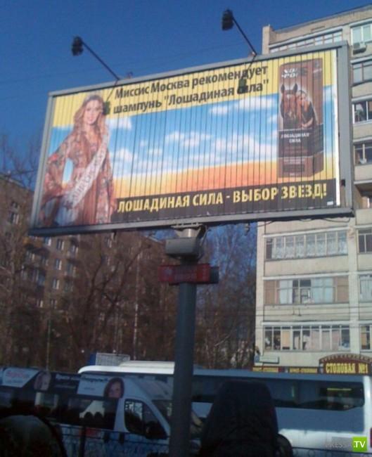 Народные маразмы - реклама и объявления, часть 37 (36 фото)