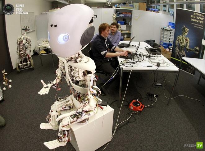 Roboy - робот гуманоид (5 фото + видео)