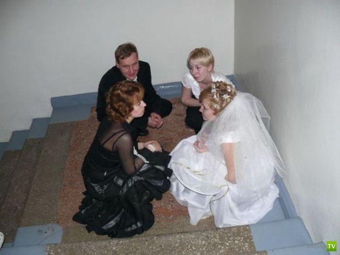 шуточные коменты к свадебным фото фильтра фильтрующий