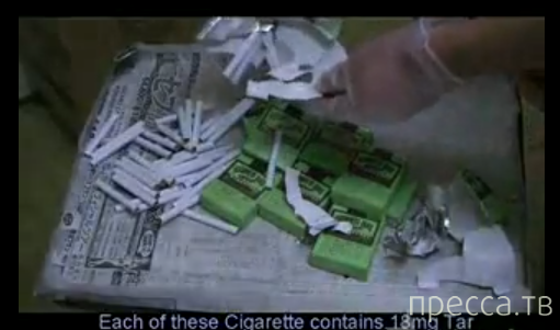 400 сигарет одной затяжкой (видео)