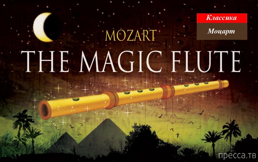 Загадка великого Моцарта и его музыки с точки зрения науки... (10 фото + видео)