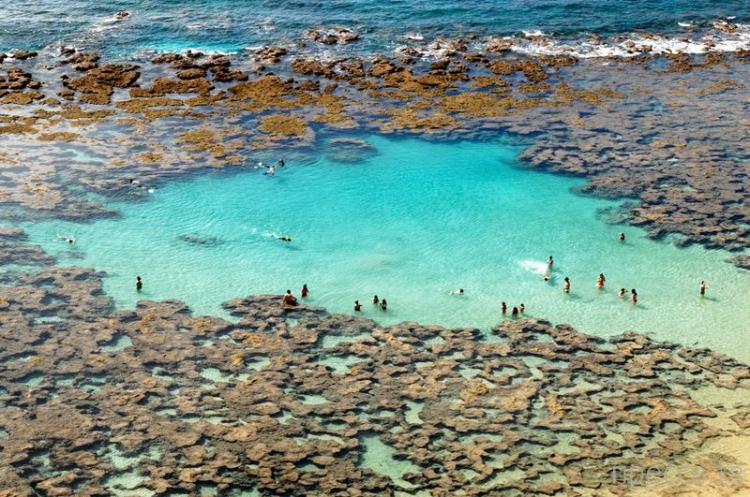 Ханаума Бэй (Hanauma Bay) - самый красивый и известный пляж гавайского острова Оаху (21 фото)