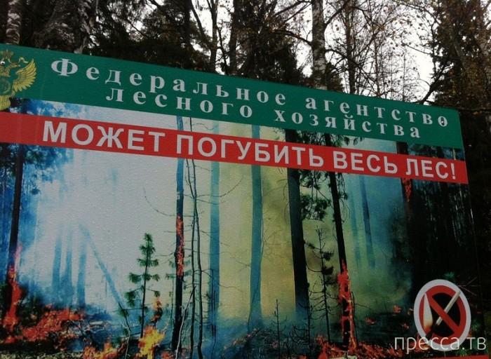 Народные маразмы - реклама и объявления, часть 47 (34 фото)
