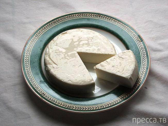 Десять испанских сыров, которые непременно стоит попробовать, путешествуя по Иберийскому полуострову (14 фото)