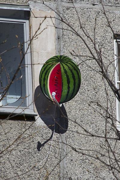 Креативная спутниковая антенна... (7 фото)
