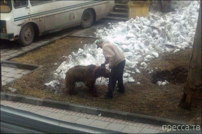 Тем временем в России, прикольные фотографии (32 фото)