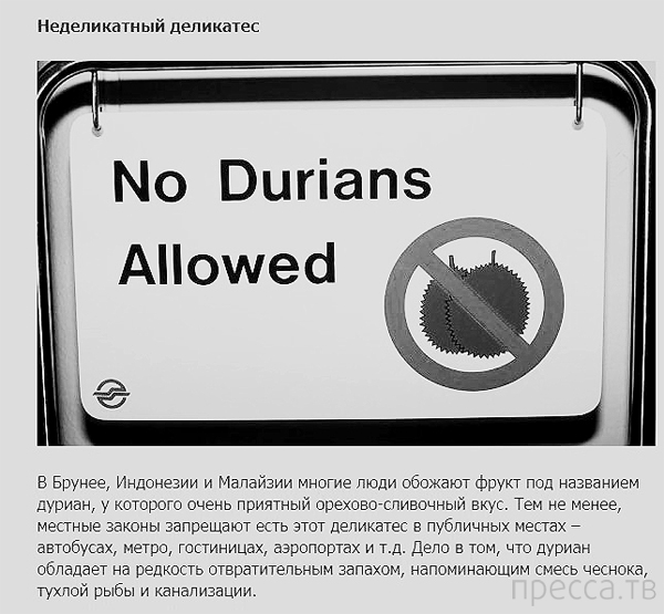 Нелепые запреты в некоторых странах (11 фото)