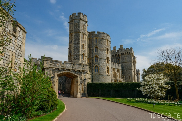Windsor castle schedule