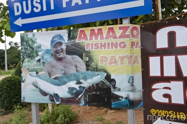 Сколько стоит вилла в Таиланде? (14 фото)