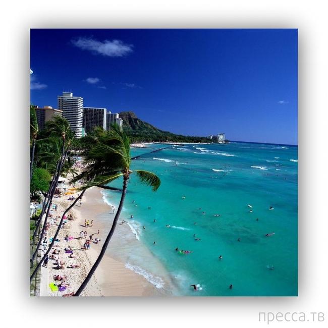 Что не стоит делать на Гавайях...
