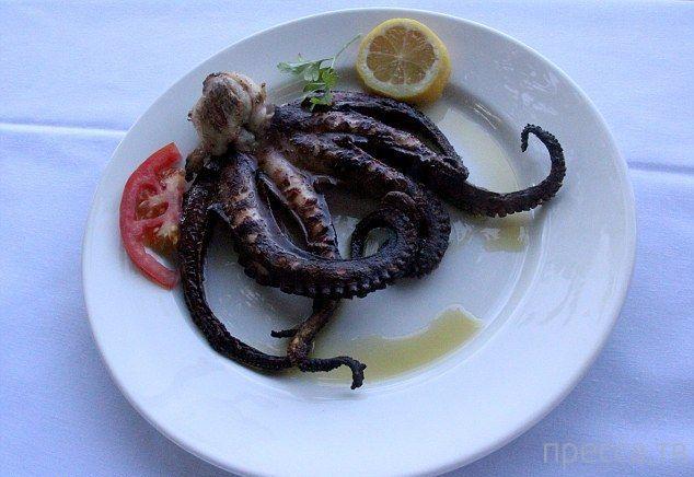 Редкий осьминог с шестью щупальцами стал обедом для американской семьи (10 фото)