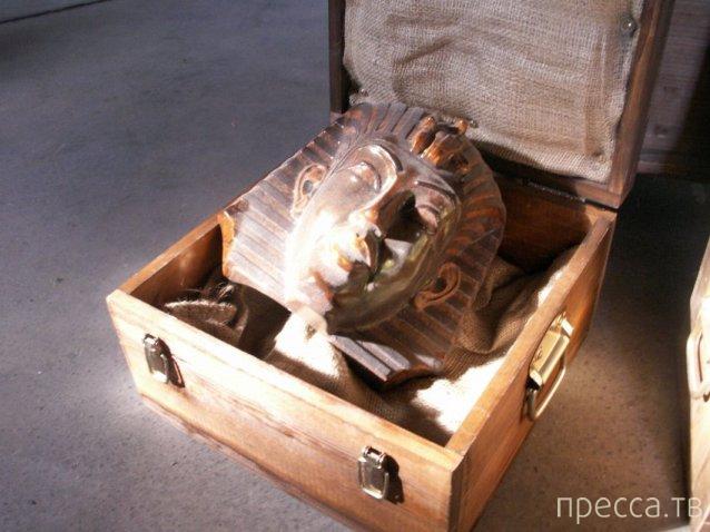 Мальчик из Германии обнаружил в недрах бабушкиного чердака древнюю египетскую мумию (6 фото)