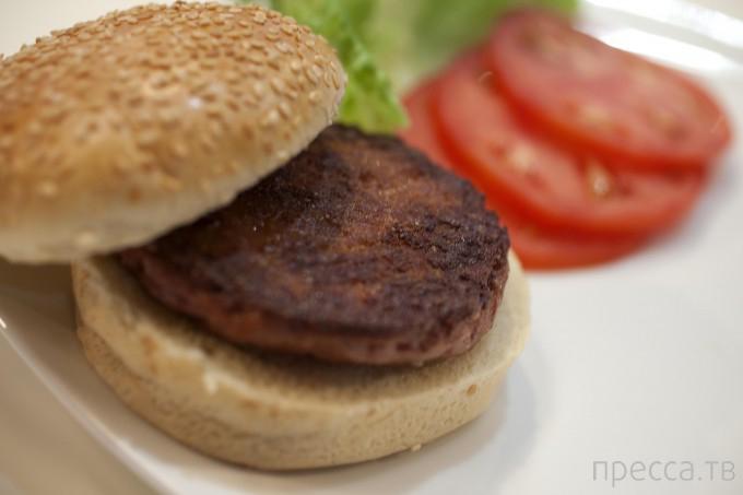 Первый в мире искусственный гамбургер ( 5 фото + видео)