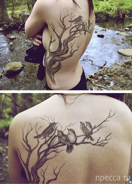 Красивые татуировки, сделанные профессионалами (48 фото)