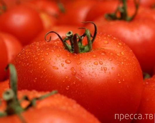 Вкуснятинка: Пикантная домашняя томатная паста (5 фото)