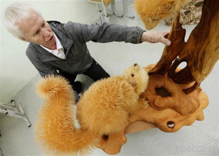 Креативные зверюшки из кедровой стружки (7 фото)