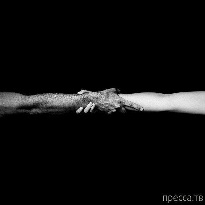 Современная классика черно-белой фотографии Бенуа Курти (13 фото)