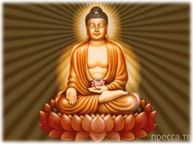 Топ 10: Самые распространенные заблуждения о буддизме (11 фото)